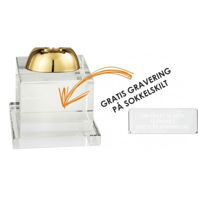 Sølv- og Guldbelagt Pokal # 350 mm